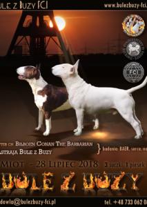Miot E 07.2018